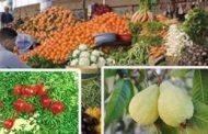 مصر تصدر بصل وطماطم وزهور وبطاطا وفاصوليا بـ 273 مليون دولار