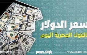 انخفاض الدولار في 10 بنوك بمستهل تعاملات الثلاثاء.. ويسجل 17.27 جنيها للشراء في «CIB»