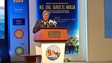 «إديسون الإيطالية» تضخ 100 مليون دولار استثمارات جديدة فى مصر